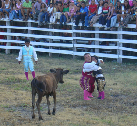 enanitos bullfighting with baby toro. (photo: alison brovold)